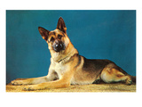 German Shepard, Retro Posters