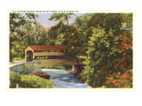 Covered Bridge, Valley Forge, Pennsylvania Posters