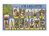 Greetings from Charlotte, North Carolina Posters