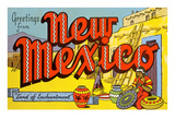 Greetings from New Mexico Print