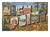 Greetings from High Point, North Carolina Poster