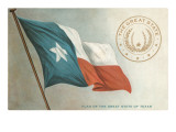 State Flag of Texas Print