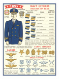 Naval Insignia Chart Poster