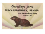 Groundhog, Greetings from Punxsutawney, Pennsylvania Prints