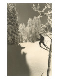 Esquiador de fondo de perfil Láminas