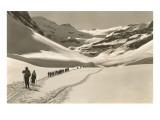 Esquiadores de fondo en fila india Láminas