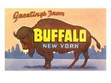 Greetings from Buffalo Plakat
