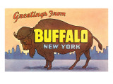 Greetings from Buffalo Poster