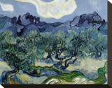 Landscape with Olive Trees Stretched Canvas Print by Vincent van Gogh