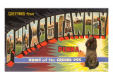 Greetings from Punxsutawney, Pennsylvania Posters