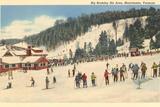 Esquí en Big Bromley, Manchester, Vermont Pósters