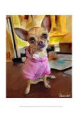 Chihuahua Bella Art by Robert Mcclintock