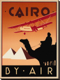Cairo by Air Stretched Canvas Print by Brian James