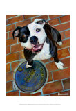 Happy Staffie Prints by Robert Mcclintock