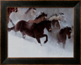 Horses in the Snow Print by David R. Stoecklein