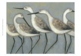 Shore Birds I Prints by Norman Wyatt Jr.