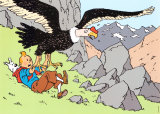 Tintin and the Condor Art par Herg&#233; (Georges R&#233;mi) 