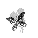 Greyscale Print of Butterfly on Flowers Print