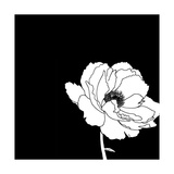 Black and White Print with Large White Flower Affiches