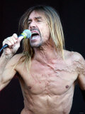Iggy Pop August 2001 Performing on Stage at the Gig on the Green Festival in Glasgow Green Photographic Print
