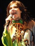 Bjork at the Glastonbury Festival June 2007. Glastonbury Festival Fotografická reprodukce