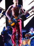 Red Hot Chilli Peppers at the Reading Festival, August 2008 Photographie