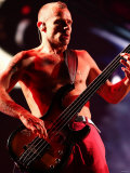Red Hot Chili Peppers Headlining the Main Stage on Saturday Night at the Reading Festival Fotografická reprodukce