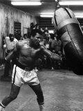 Boxaren Muhammed Ali tränar inför matchen mot Leon Spinks Fotoprint