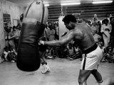Boxaren Muhammed Ali tränar inför matchen mot Leon Spinks Fotografiskt tryck