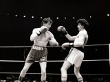 Boxing - Barry Mcguigan V Esteban Eguia at the Royal Albert Hall Photographic Print