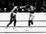 Joe Frazier vs Muhammad Ali Boxing, 1971 Reproduction photographique