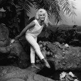 1963 Film Tamahine: Actress Elke Sommer Fotografie-Druck