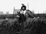 Grand National 1973 Red Rum Ridden by Brian Fletcher Jumps a Fence and Goes on to Win Lámina fotográfica
