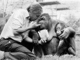 David Attenborough with Orang-Utang and Her Baby at London Zoo, April 1982 Photographic Print