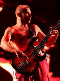 Red Hot Chili Peppers Headlining the Main Stage at the Carling Reading Festival Fotografická reprodukce