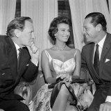 Film Star Sophia Loren Enjoys the Attention of Trevor Howard and William Holden, December 1952 Photographic Print