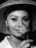 Sophia Loren, 1960 Photographie