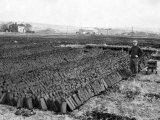 Peat Cut at Upholland Moss, April 1954 Photographic Print