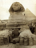 The Great Sphinx Guarding the Pyramids Egypt Statue, c.1910 Photographic Print