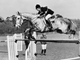 Columbus the Horse of Princess Anne Clearing Obstacale in Jumping Section of Windsor Horse Trials Photographic Print