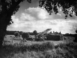 Harvest, Stacking Corn in Norfolk, September 1946 Photographic Print
