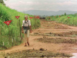 Princess Diana in Minefield Outside Haunbo Angola Endorsing the Red Cross Campaign Photographic Print