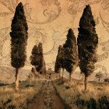 Toscana I Arte por Colin Floyd