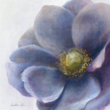 Contemporary Anemone Art by Danhui Nai