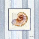 Sanibel Shell III Poster von Avery Tillmon