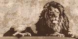 Lion Sztuka autor Andrew Cooper