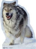 Wolf Cardboard Cutouts