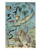 Oceanographie Art