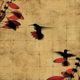 Colibri I Posters par Chris Donovan