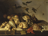 Mussels and Fruit Still-Life Reproduction procédé giclée par Balthasar van der Ast